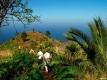 Reizen Canarische Eilanden