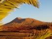 Aanbieding Fuerteventura