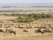 Lastminute Tanzania